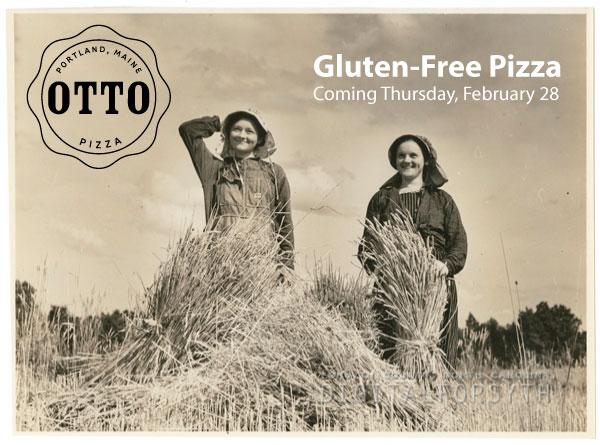 glutenfree1